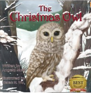 The Christmas Owl, pic