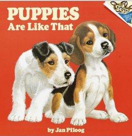 VintagePuppies,pic